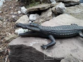 Крокодил бронза  (Crocodile bronze)