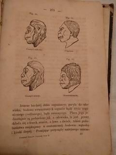 1872 Польская книга о природе с дереворитами