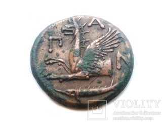 Пантикапей ПАN Сатир и грифон Боспорское царство
