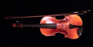 Скрипка  со смычком с запасными струнами в чехле , Чехия по одному предмету