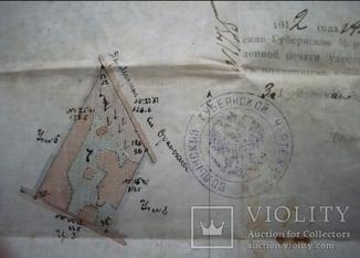 Имперский документ на ткани, размеры 43×27 см.