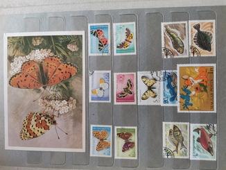 Альбом марок разных стран мира, флора и фауна