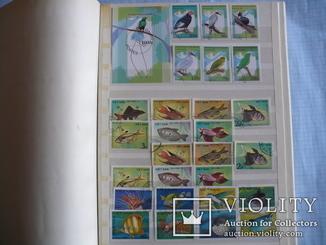 760 марок,15 блоков фауна стран Европы и Азии в альбоме