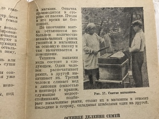 1938 Пчеловодство: За 100 кг мёда и размножение пчелиных семей