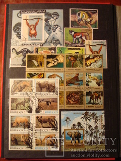 Альбом марок разные темы разные страны спорт флора фауна ... 600шт. 20 фото