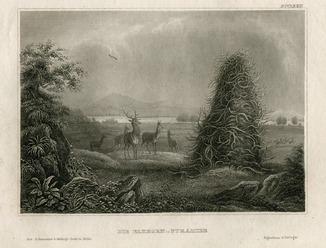 Старинная гравюра. США. Пирамида Эльхорна в Верхнем Миссури. 23х15см