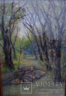 Лесной пейзаж, подпись С.Шишко 47х65 см